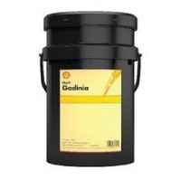 Shell gadinia 30  20l