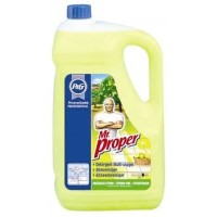 Mr propre 5l citron...